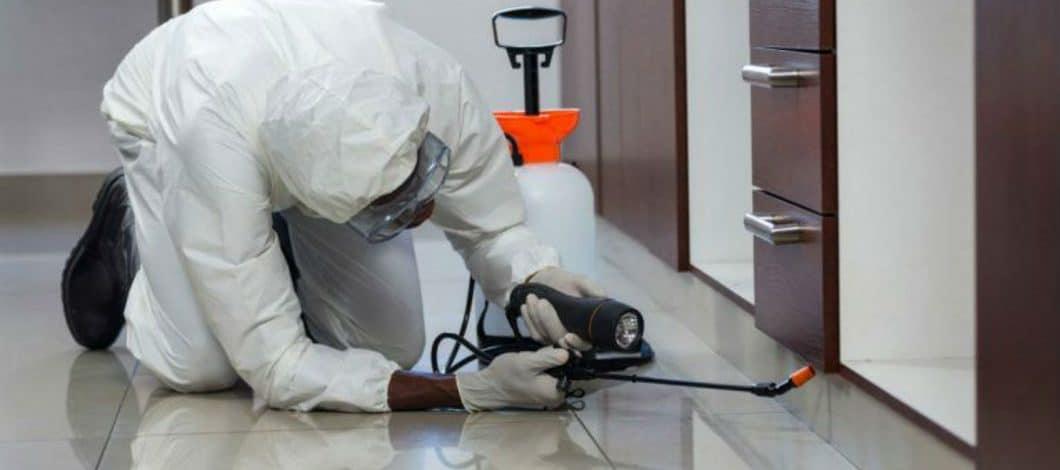 Εντομολόγος Pest Control